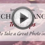 Travel Tip #19- How to Take a Great Photo in the Field