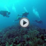 The Best Scuba Diving on the Planet?