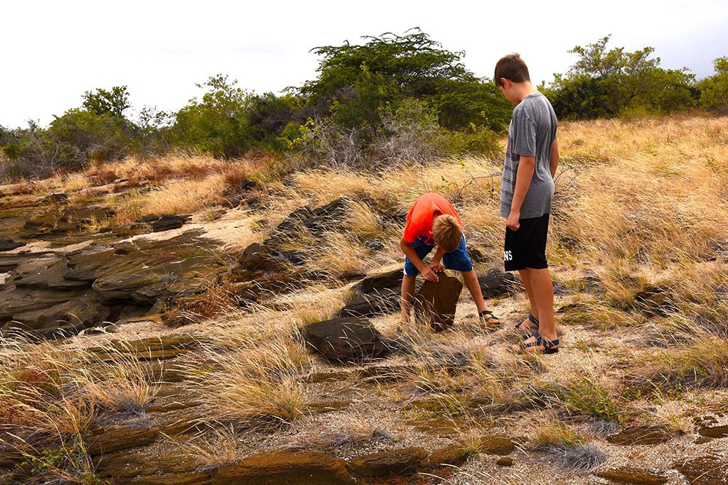 Theo & Duncan on a scorpion hunt | Photo by Brian Monnin